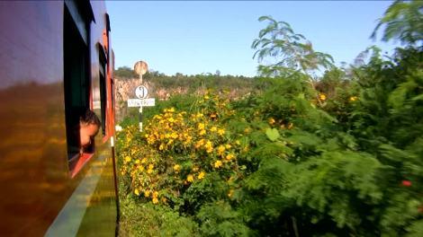 655125554-mirar-hacia-afuera-ventana-vehiculo-viaje-en-tren-pasajero